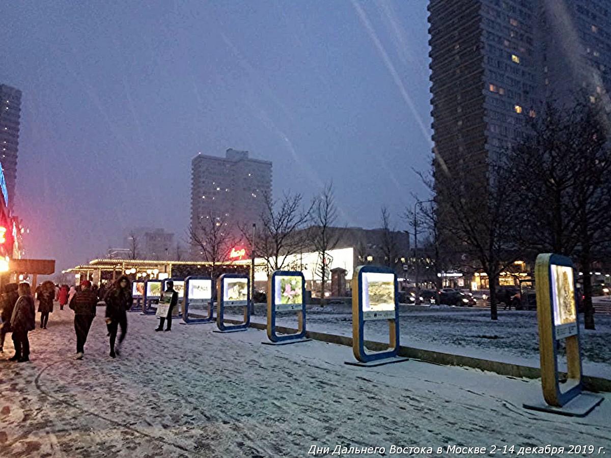 Дни Дальнего Востока в Москве - ярмарка на Новом Арбате